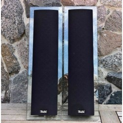 2x diavolo CL 250 FCR 2 vie Satellite Center altoparlanti Columa 250 100w vetro